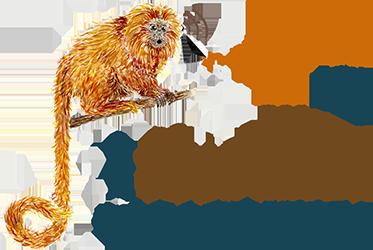 Logo I CBB_Completo_small